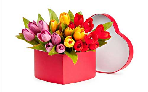 Quà tặng mẹ nhân ngày sinh nhật